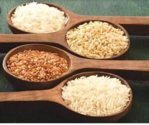 rice variants