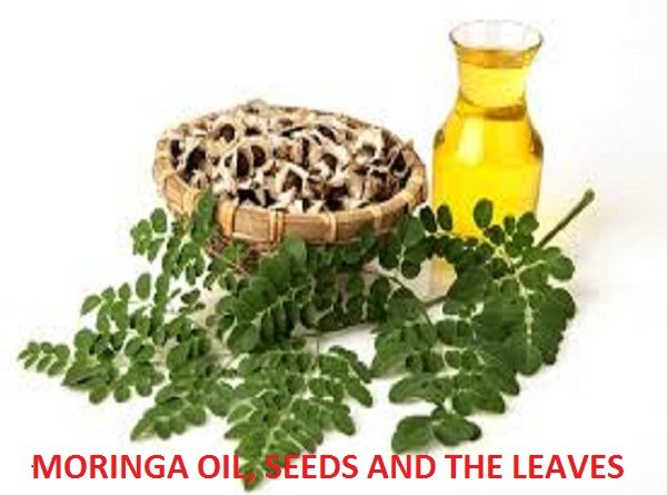 Moringa oil benefits