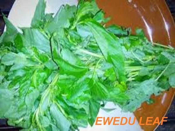 Ewedu Leaf Health Facts
