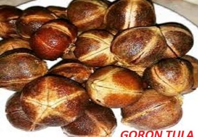 Goron Tula Fruit Natural Cleansing