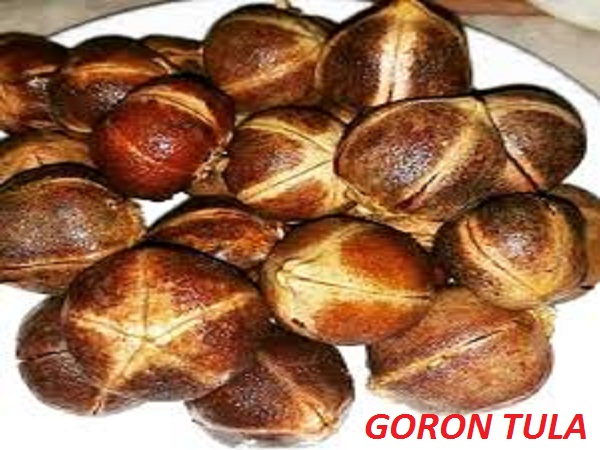Goron Tula Fruit Health Benefits