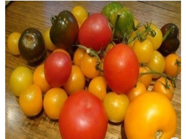 Tomato Nutrition- Different Colors and Shapes