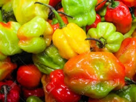 Benefits of Scotch Bonnet Peppers