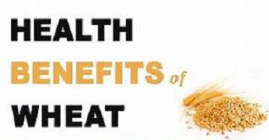 Super Wheat Health Benefits