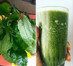 Ugu Juice Side Effects & Health Benefits of Pumpkin Leaf Juice