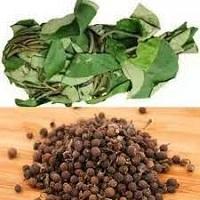 Health Benefits of Uziza Leaf and Seed Nutrition & Uses