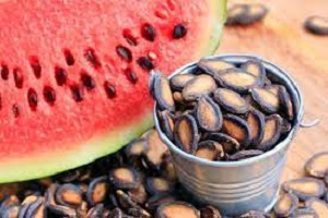 Is Watermelon Seed Good for Ulcer Patients 2021