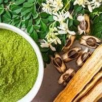Moringa Benefits, Uses, Moringa Seed Powder & Tea
