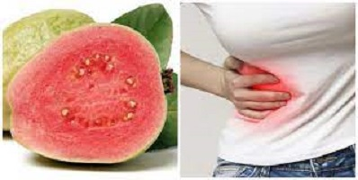 Does Swallowing Guava or Tomato Seed Cause Appendicitis in humans